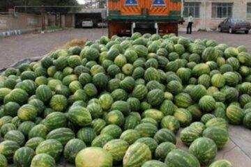 جاسازی۱۲۳ کیلو تریاک در بار هندوانه/ قاچاقچیان دستگیر شدند